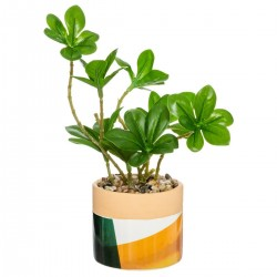 Plante artificielle en pot céramique H15cm ARTY STUDIO - Vert jaune