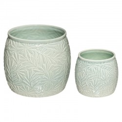 Lot de 2 pots en céramique CELA, ÉDITION VÉGÉTALE - Vert céladon