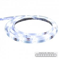 Ruban LED 3m - Blanc froid